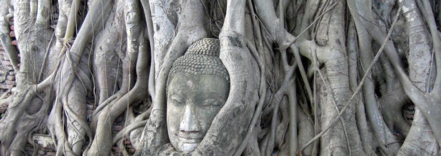 Buddha_Wat Mahatat