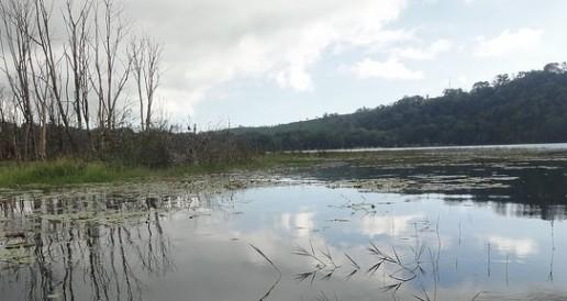 Tamblingan lake-bali
